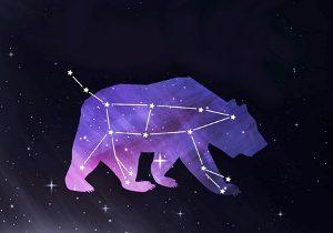 5-great-bear