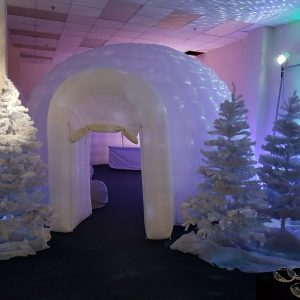 igloo grotto